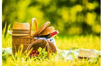 Что взять с собой на природу: ТОП-5 вещей для пикника